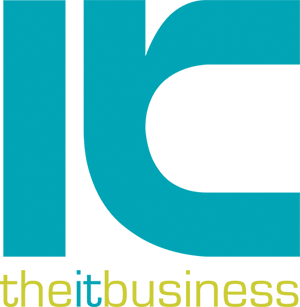 The IT Business